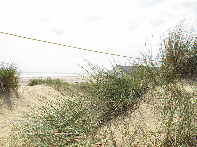 Sand Dunes at Camber Sands - Camber Sands Holiday Park