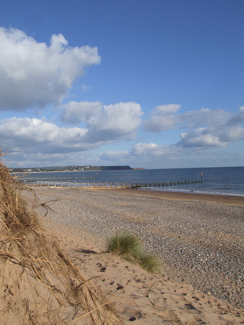 Sand Dunes at Dawlish Sands